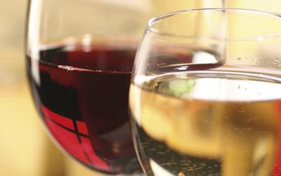 Entdeckt unsere neuen Weine